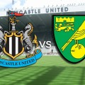 prediksi-newcastle-united-vs-norwich-city-18-oktober-2015