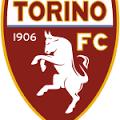 prediksi-torino-vs-genoa-29-oktober-2015