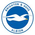 prediksi-skor-brighton-hove-albion-vs-ipswich-town-30-desember-2015