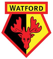 prediksi-skor-watford-vs-manchester-city-3-januari-2016