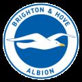 prediksi-bola-brighton-hove-albion-vs-newcastle-united-01-maret-2017