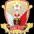 prediksi-skor-bulleen-lions-vs-hume-city-24-juni-2017